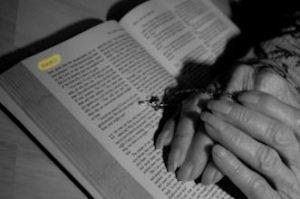 grandmas hands on bible