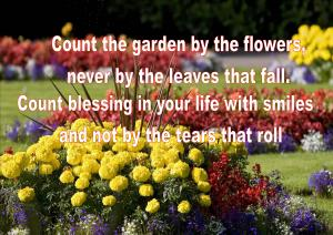 count your blessing 2