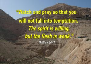 Matthew 26 41
