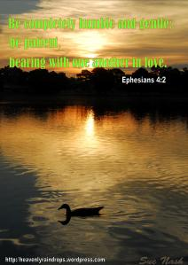 Ephesians 4 2 Sue Nash