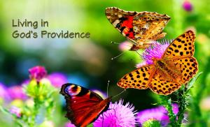 Living in God's Providence - Karina's Thought