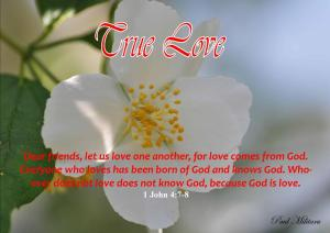 True Love -Karina's Thought- Paul Militaru (2)