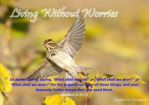 LIVING WITHOUT WORRIES-Karina's Thought