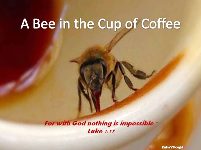 A Bee in the cup of coffee- Karina's Thought